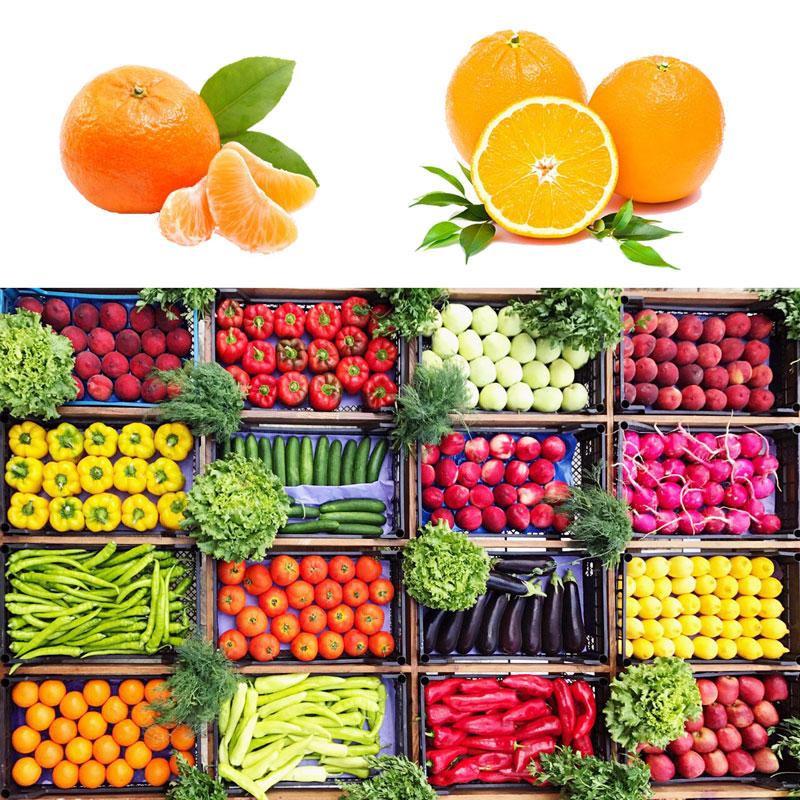 مرکز فروش میوه و تره بار شیراز